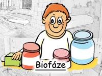Biofáze - Enzymatická regenerace